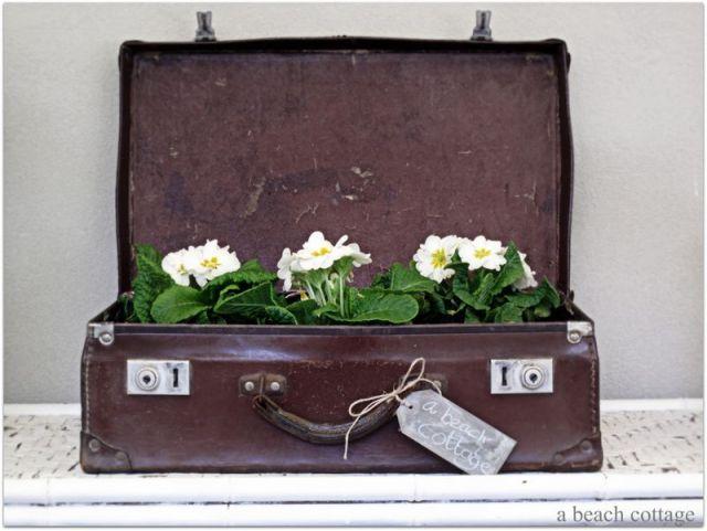 Suitcase 5