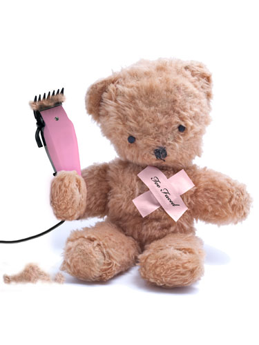 Teddy bear brush