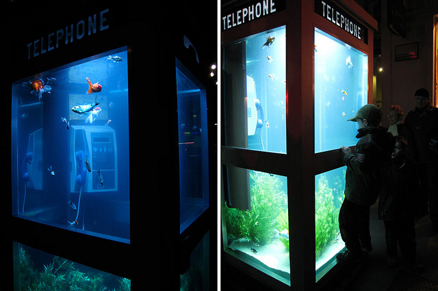 Telephone booth 1